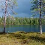 Järvi, jonka yllä lentää kaksi joutsenta.