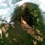 Karhunpesä keväisessä metsässä.