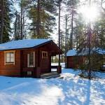 Hirsiseinäiset sauna ja mökki kevätauringon paisteessa.